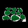 prise escalade osmose lot strap vert 2