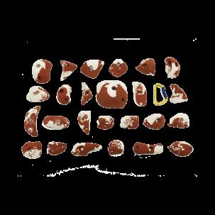 Panneau Intérieur Brut 1500*1000mm