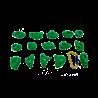 prise escalade osmose lot schtick vert