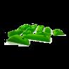 prise-escalade-m-facets-vert-5